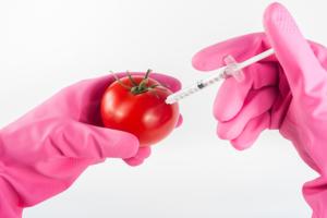 tomate seguridad alimentaria