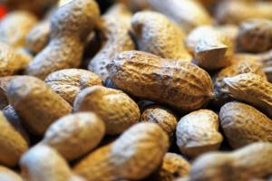 cacahuetes seguridad alimentaria