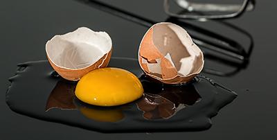 huevo seguridad alimentaria