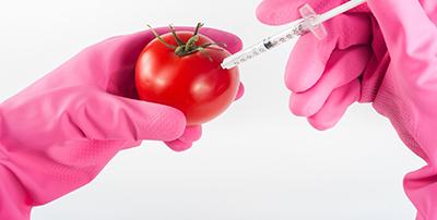 bacterias-comunes-alimentos-unika