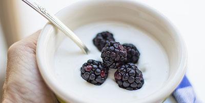yogur analisis alimentos