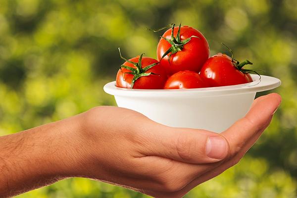 tomates analisis alimentos
