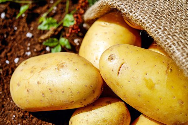 patatas seguridad alimentaria