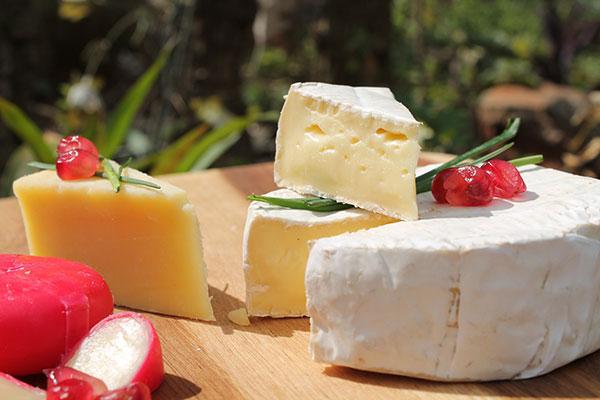 tipos quesos analisis alimentos