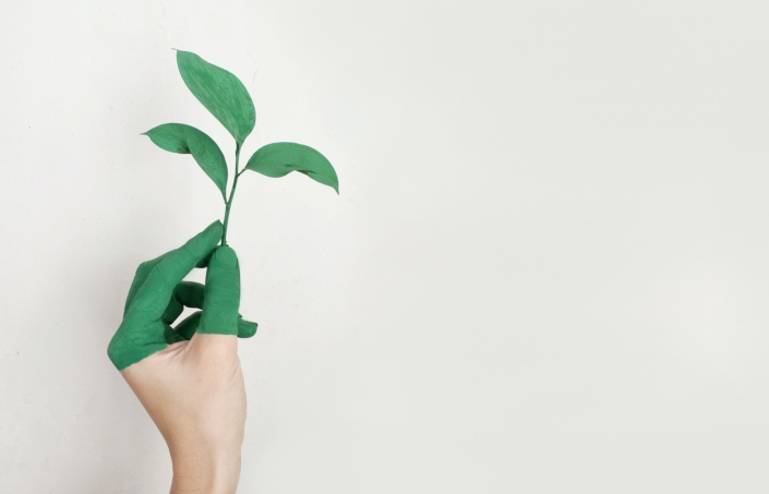 Requisitos del etiquetado ecológico